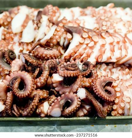 Octopus fresh raw sashimi buffet, japanese sushi - stock photo