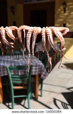 Octopus put out to dry in the sun outside a taverna in Rethymno, Crete