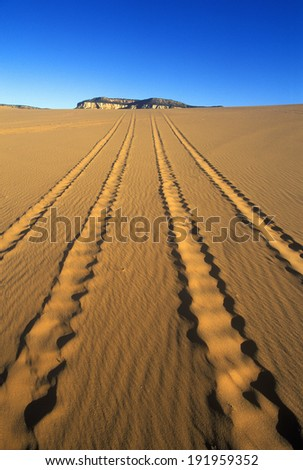 Off road vehicle tracks at Coral Pink Sand Dunes State Reserve in southern UT - stock photo