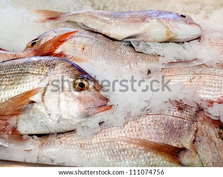 Offering of fresh fish chilled with crushed ice at a fishery, fish market or supermarket on display for shoppers to buy for a delicious seafood dinner - stock photo