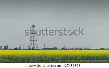 Oil and gas rig profiled over canola rural field - stock photo