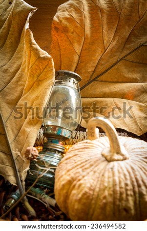 Oil Lamp and pumpkins leaves Autumn scene in Vintage Composition - stock photo
