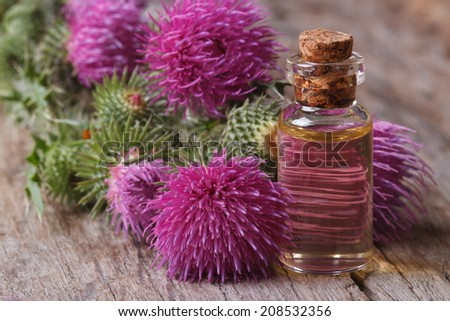 Oil of burdock close-up on a table in a glass bottle horizontal  - stock photo