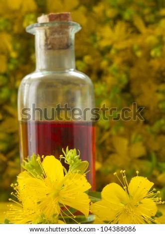 oil of St John's wort - stock photo