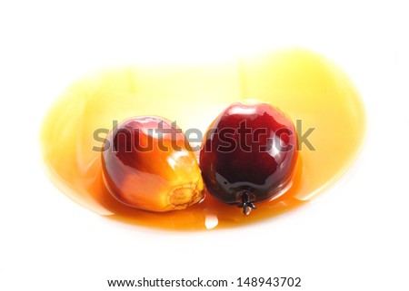 Oil palm fruits and cooking oil isolated on white background - stock photo