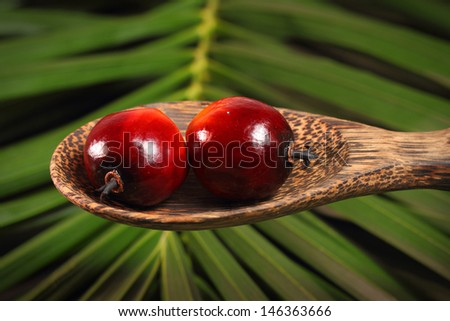 Oil palm fruits and wood ladle on a leaves background - stock photo