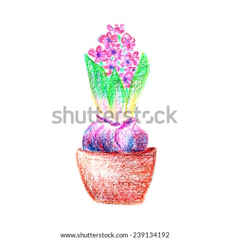 Oil pastel hand drawn clay pot flower hyacinth in purple and pink isolated on white background - stock photo