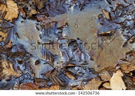 oil pollution on forest land - stock photo