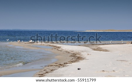 Oil spill. Contaminated Beach. - stock photo