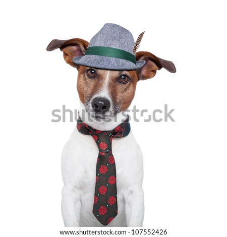 oktoberfest dog with traditional tie and hat
