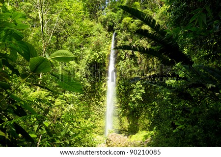 OLA VIDA WATERFALL SURROUNDED BY DENSE VEGETATION, DEEP DOWN INTO THE ECUADORIAN JUNGLE   - stock photo