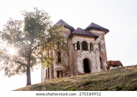 Old, abandoned, ruined house in the field with horse - stock photo
