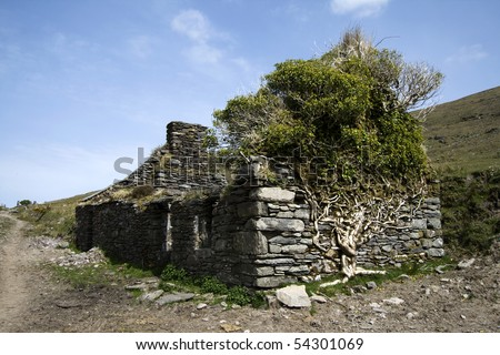 Old abandoned stone cottage overgrown by a tree along the Kerry Way - stock photo