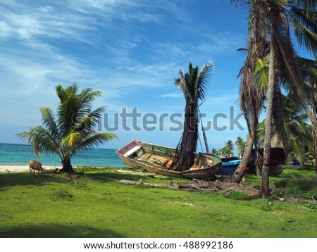 old abandoned wooden boat on beach shore with tree growing through floor Big Corn Island, Nicaragua, Central America