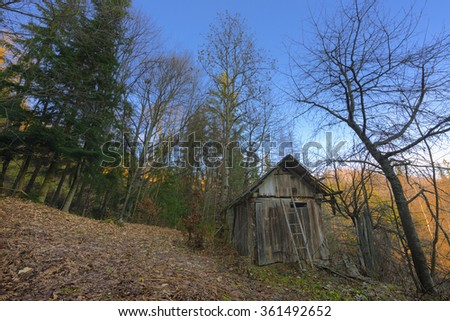 old abandoned wooden hut in the forest - stock photo