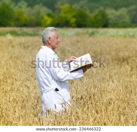 Old agronomist in white coat examining wheat yields in field - stock photo