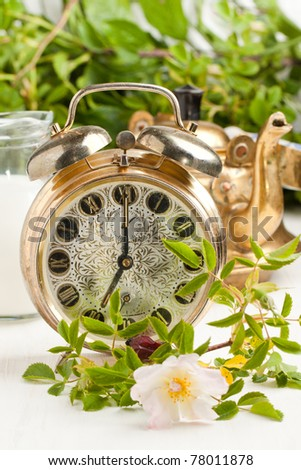 Old alarm-clock, teapot and jug of milk with wild rose on white table - stock photo