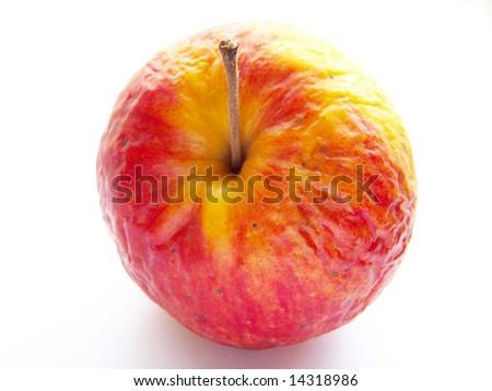 old apple - stock photo