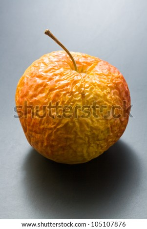 Old apple. Whole, overripe, wrinkled old apple on neutral gray background. - stock photo