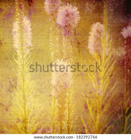 old background canvas texture, flowers of the meadow - stock photo
