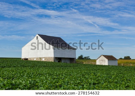 Old barn in Lancaster county by a soybean field on a summer day