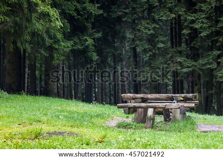 Old bench in the middle of the forest - stock photo