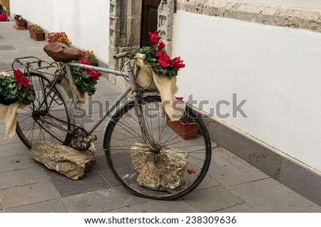Old bicycle decorated with red flowers.