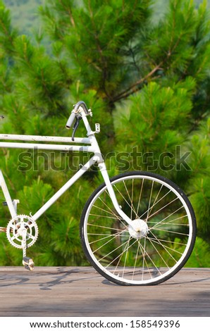 Old bicycle park with green background
