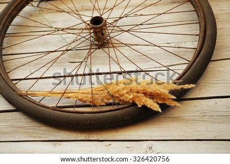 Old bicycle wheel on the wooden wall in the garden - stock photo