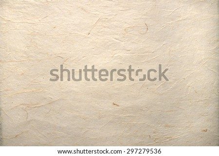 old blank sheet of parchment
