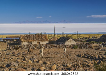 Old bolivian village with llamas and vast white salt flat Salar de Uyuni in the background - stock photo