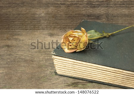 old book and withered rose - stock photo