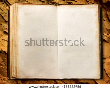Old book on stone wall - stock photo
