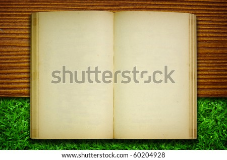 Old book on wood and grass for text and background - stock photo