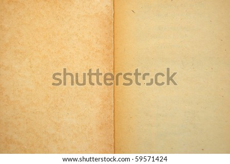old book with blank pages
