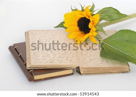 old book written by hand - stock photo
