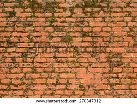 Old brick wall texture, moss growing on it - stock photo