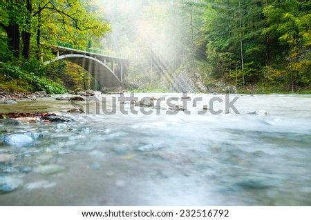 Old bridge in forest - stock photo