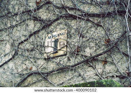 old building wall covered by ivy branches with focus on entrance sign