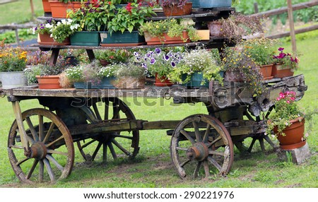 old cart decorated with many flowers in the summer