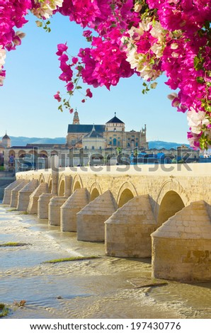 old cathedral and roman bridge, Cordoba, Andalusia, Spain - stock photo
