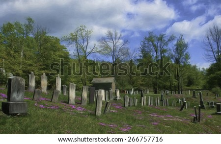 Old Cemetery Near Bennington, Vermont with Phlox Covering the Ground - stock photo