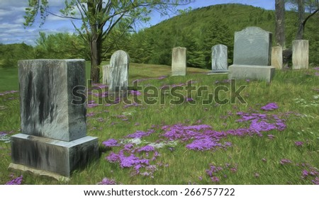 Old Cemetery Near Bennington, Vermont with Phlox Covering the Ground