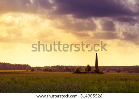 Old chimney hidden in a field of alfalfa. Masuria, Poland.