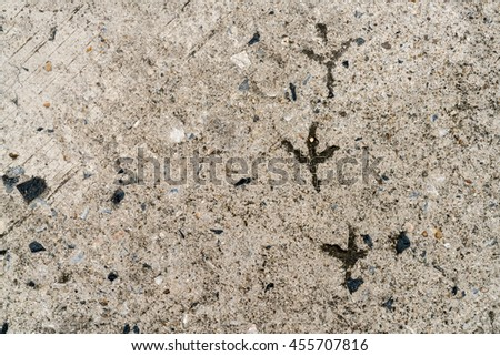 Old concrete floor with chicken footprint background texture - stock photo