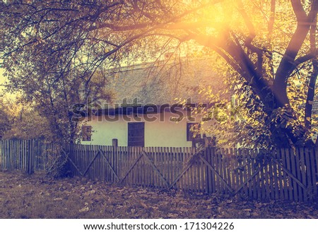Old cottage in the forest - stock photo