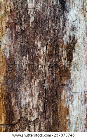 old crannied wood texture background - stock photo