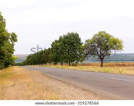 Old damaged asphalt road in rural Ukraine. Rural landscape. - stock photo