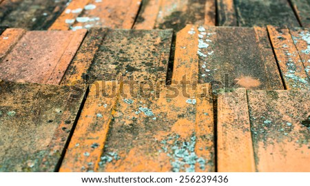 Old dirty orange roof tiles with moss and lichen. - stock photo