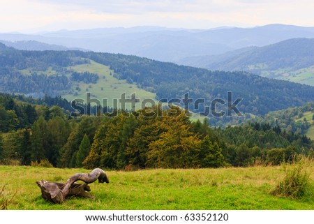 Old dry large tree branch and mountainous landscape on background - stock photo